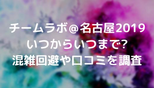 チームラボ@名古屋2019はいつからいつまで?混雑回避や口コミを調査